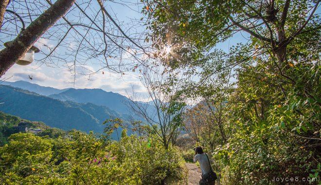 三峽花岩山林 (門票、交通資訊) 三峽旅遊景點